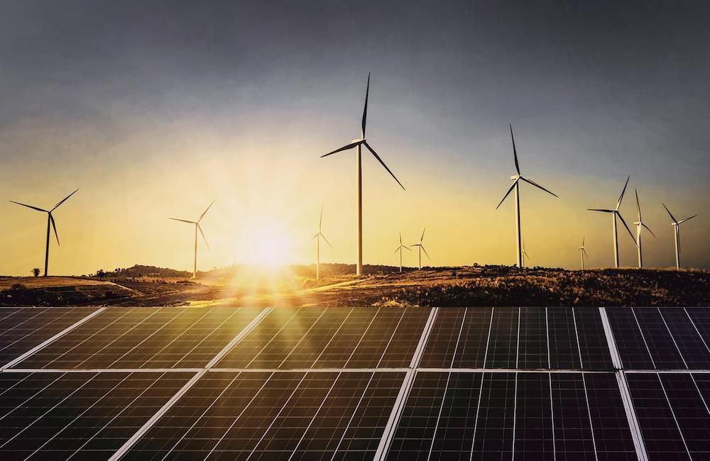 A wind power farm. Walmart's regenerative approach: Going beyond sustainability