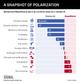 GRAPHIC TRUTH: SNAPSHOT OF POLARIZATION
