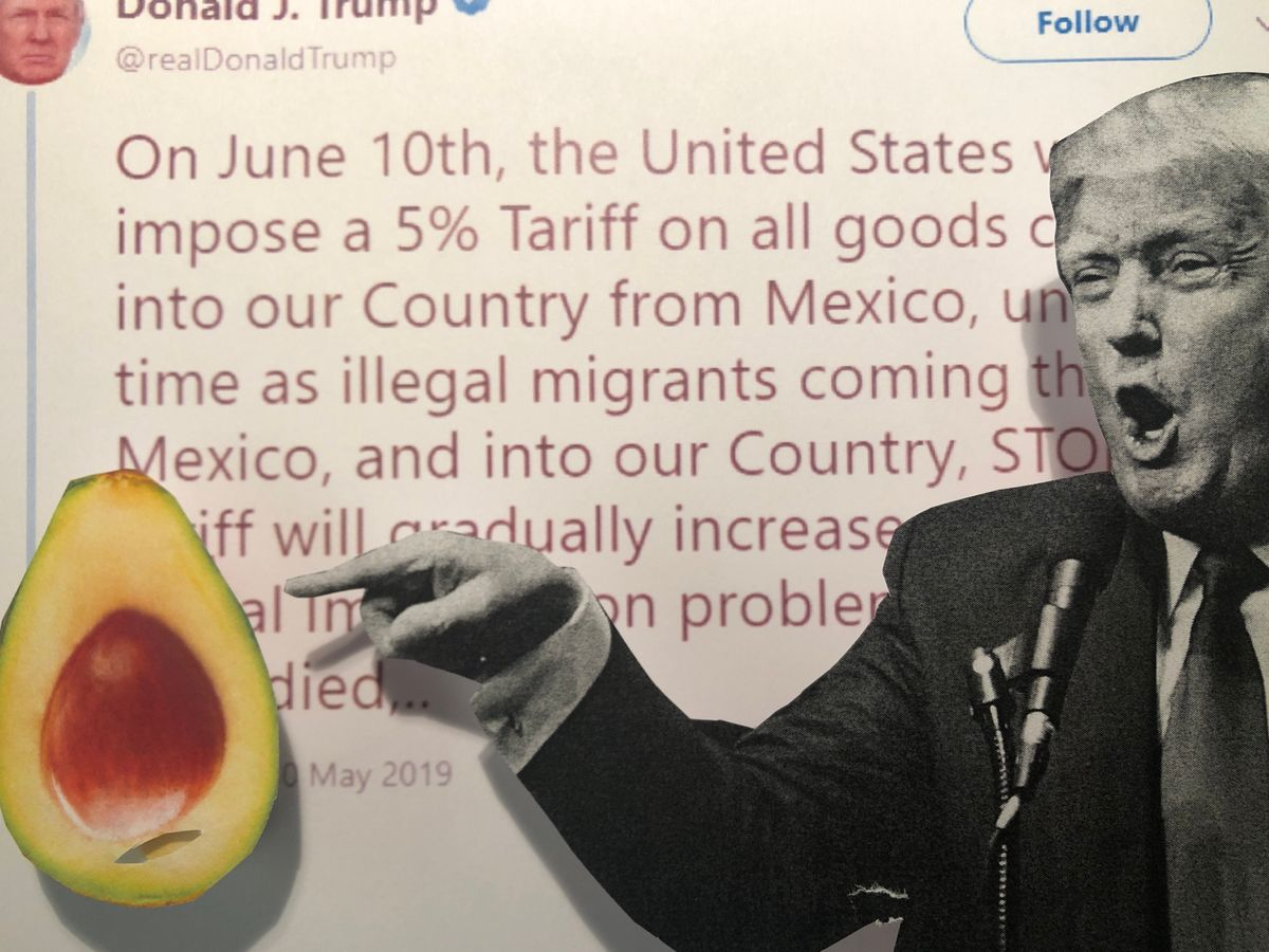 Trump Vows Mexico Tariffs: Who would they Hit, and Why?
