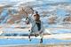 What We're Watching: Kim Jong-un as Santa