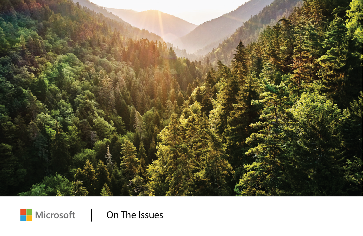 Microsoft commits to achieve 'zero waste' goals by 2030