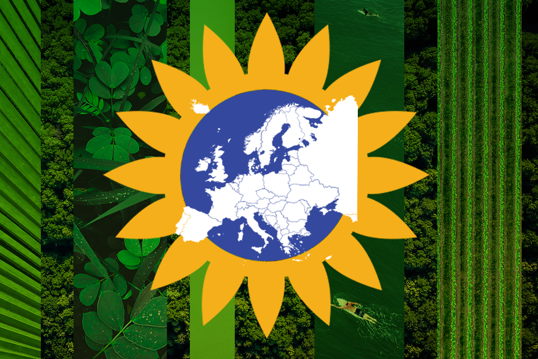 Is it the Greens' moment in Europe?