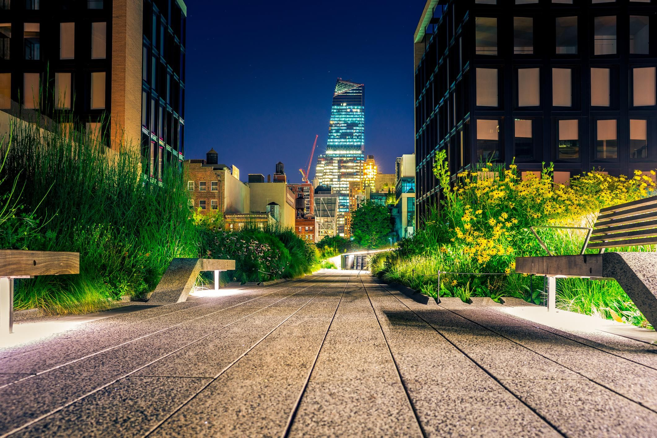 Landscaped walkway with an evening view of lighted office buildings