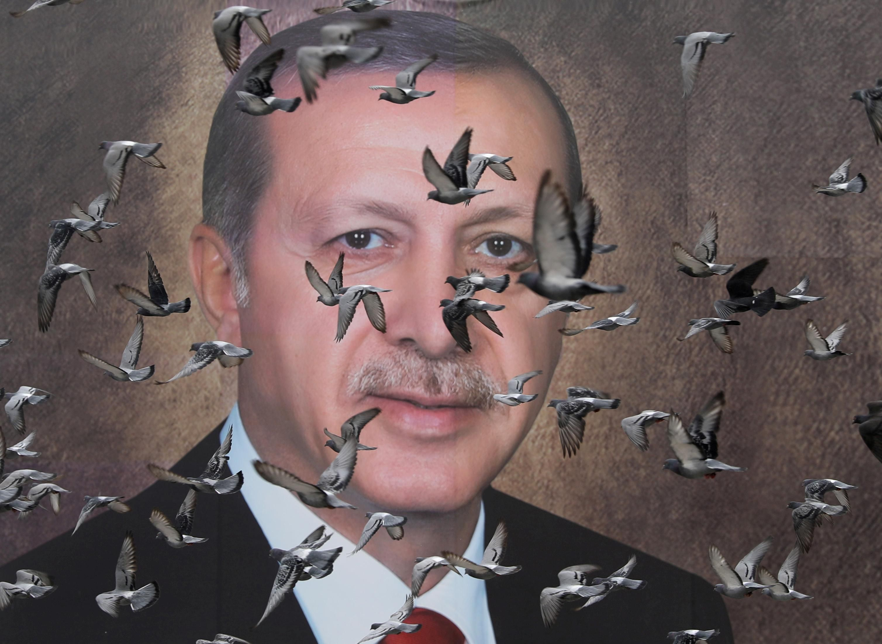 Pigeons fly in front of a large poster of Turkish President Tayyip Erdogan in Bursa, Turkey, April 6, 2019.